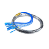 CATV Network Optical Fiber Pigtail 12 Core Fiber Outdoor SC Pigtail Waterproof